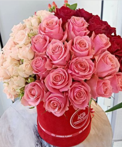 Val's 3Clolored Roses